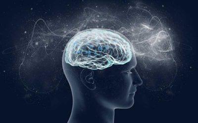3 erros que nosso cérebro comete diariamente